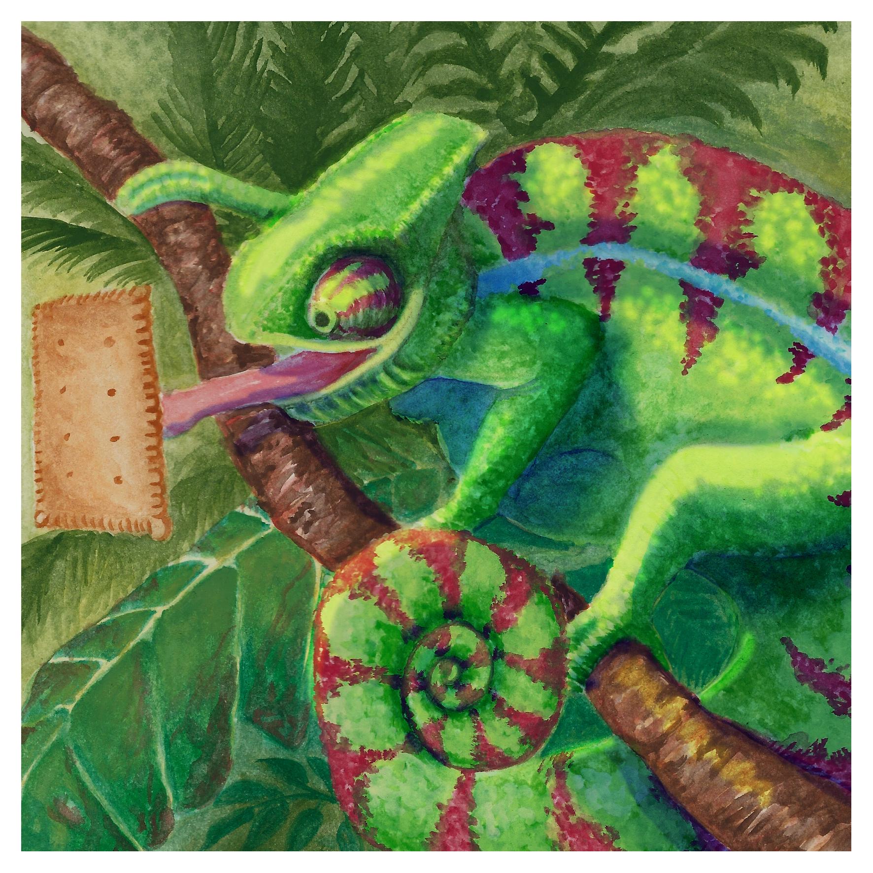 Jungle Chamäleon